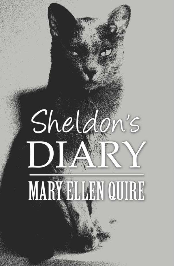 Sheldon's Diary Cover Pic